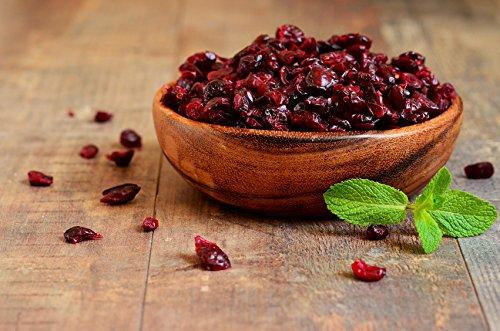 arándanos-secos-antioxidantes