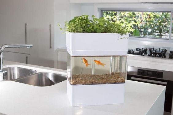 ecotecnologia para los hogares