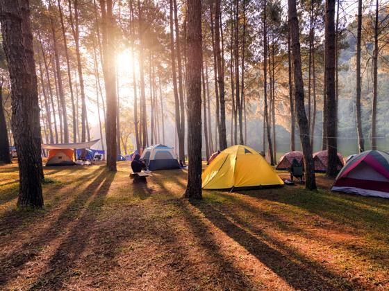 consejos útiles para el campamento