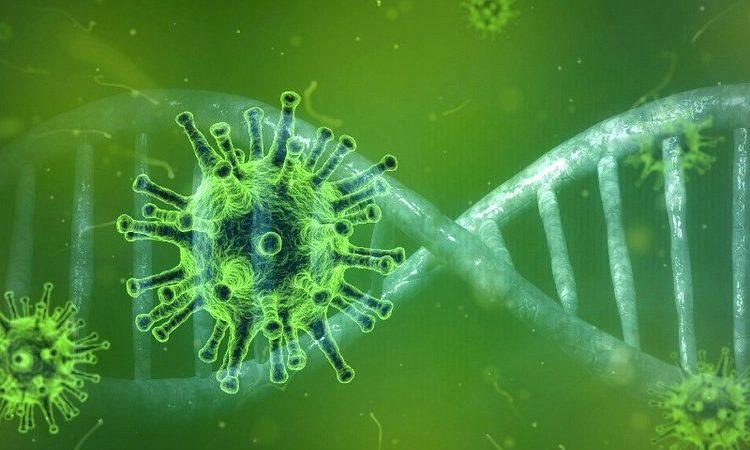 coronavirus y sus causas